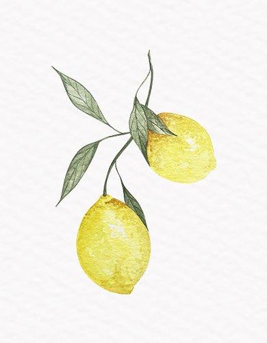 Kit Digital Limões