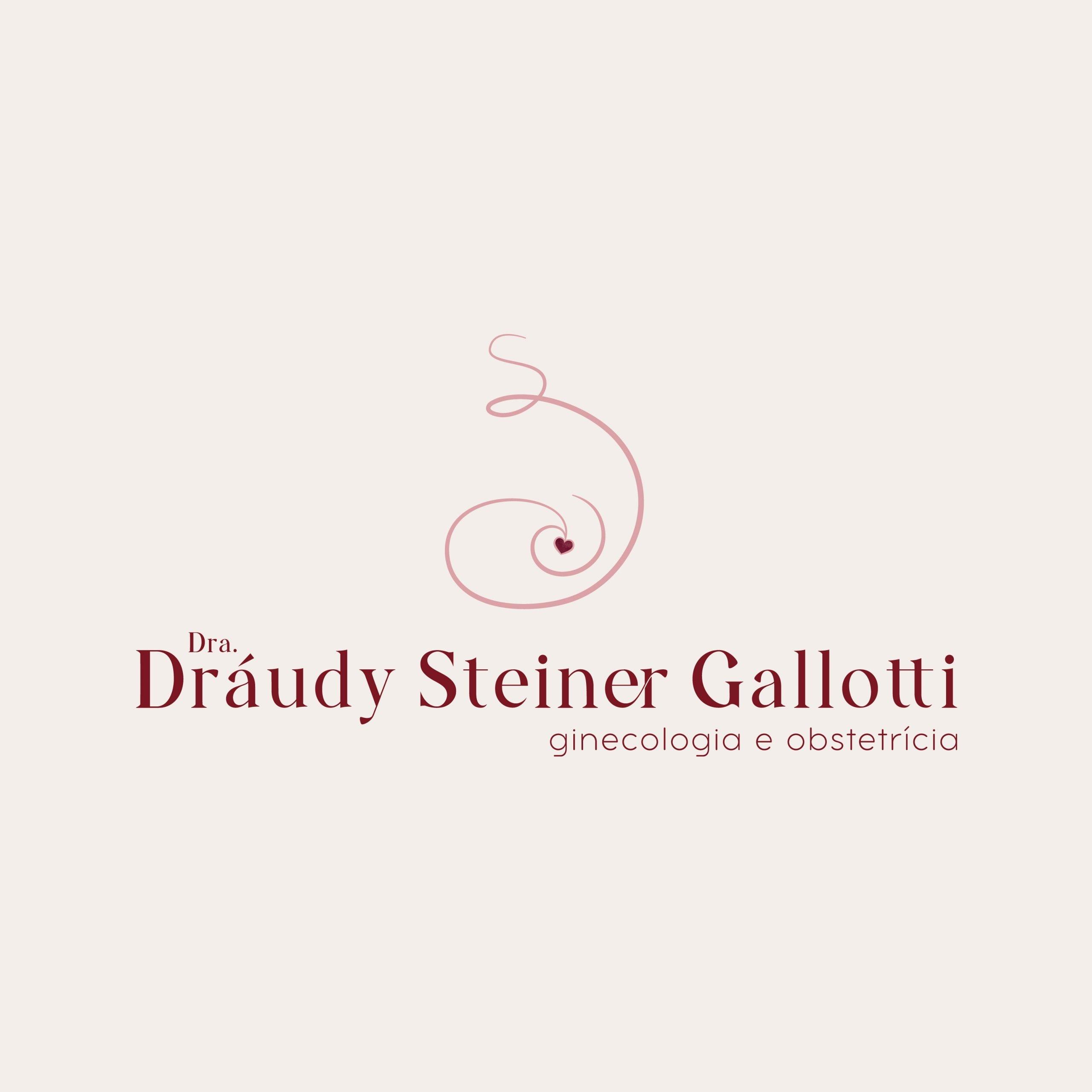 Identidade Visual Empresarial - Dráudy Steiner